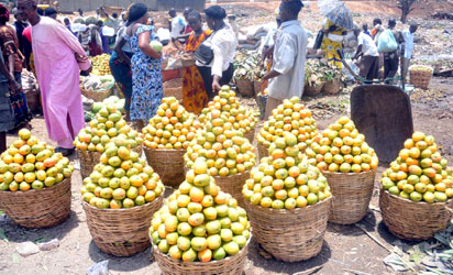 Mangoes on display at Zuba Fruit Market in Abuja.NAN Photos